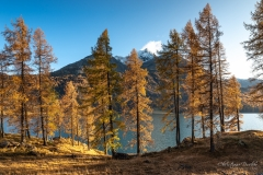 Silsersee - ©Christiane Dreher