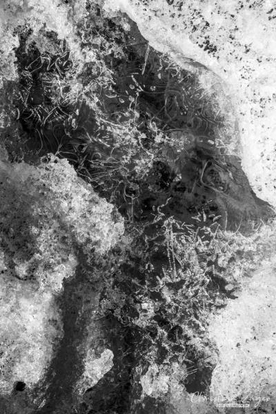 Eis auf dem Blüemlisalpgletscher