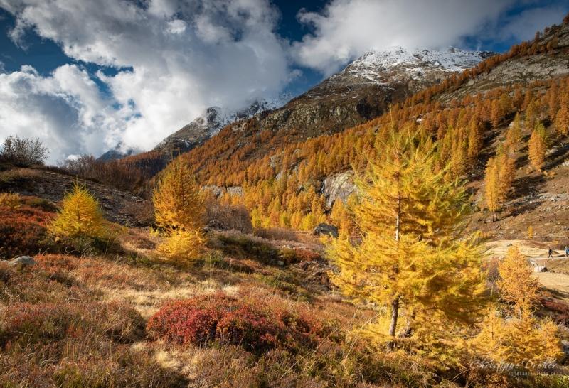 Lötschental - ©Christiane Dreher