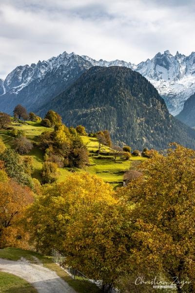 Saftiger Wiesen in Bergell  - ©Christian Züger