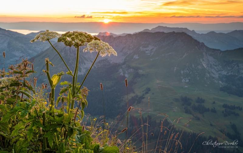 Sonnenuntergang Pic Chaussy (2.351 m) - ©Christiane Dreher