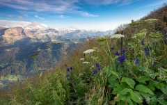 Pic Chaussy (2.351 m) - ©Christiane Dreher